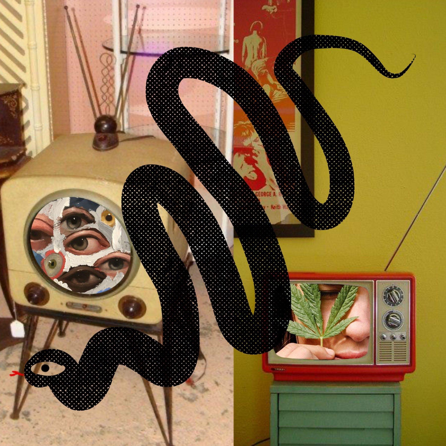 Bryn Newman Digital Collage Illustration